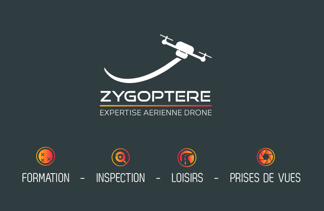 ZYGOPTERE